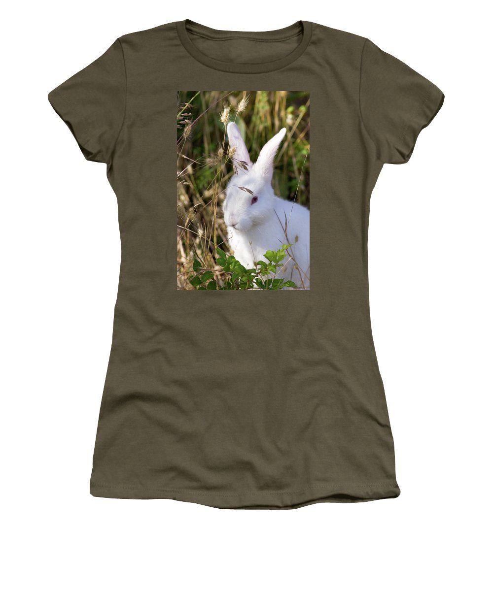 Rabbit Women's T-Shirt featuring the photograph White Rabbit by Randall Ingalls