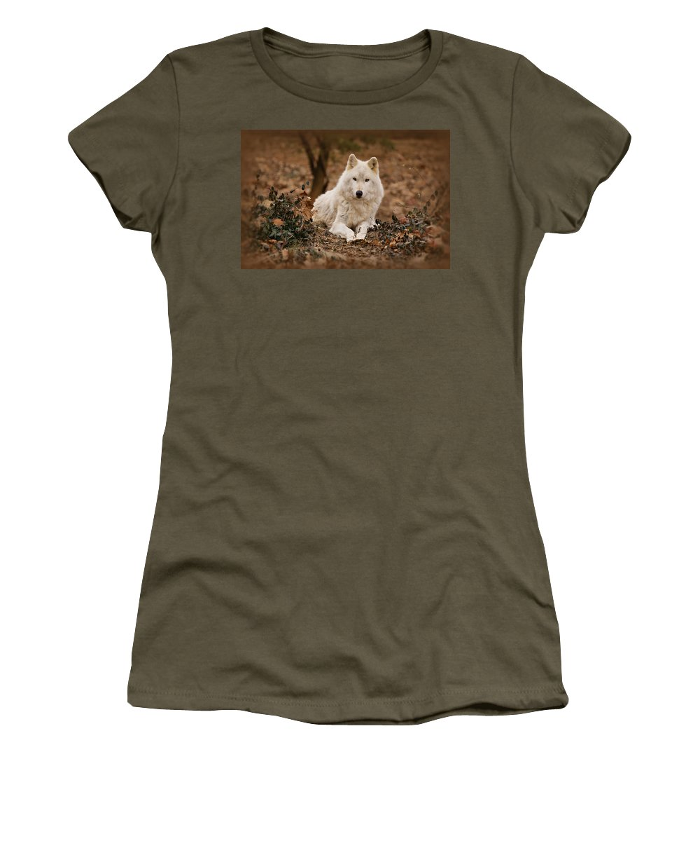Wolf Women's T-Shirt featuring the photograph White Wolf by Sandy Keeton