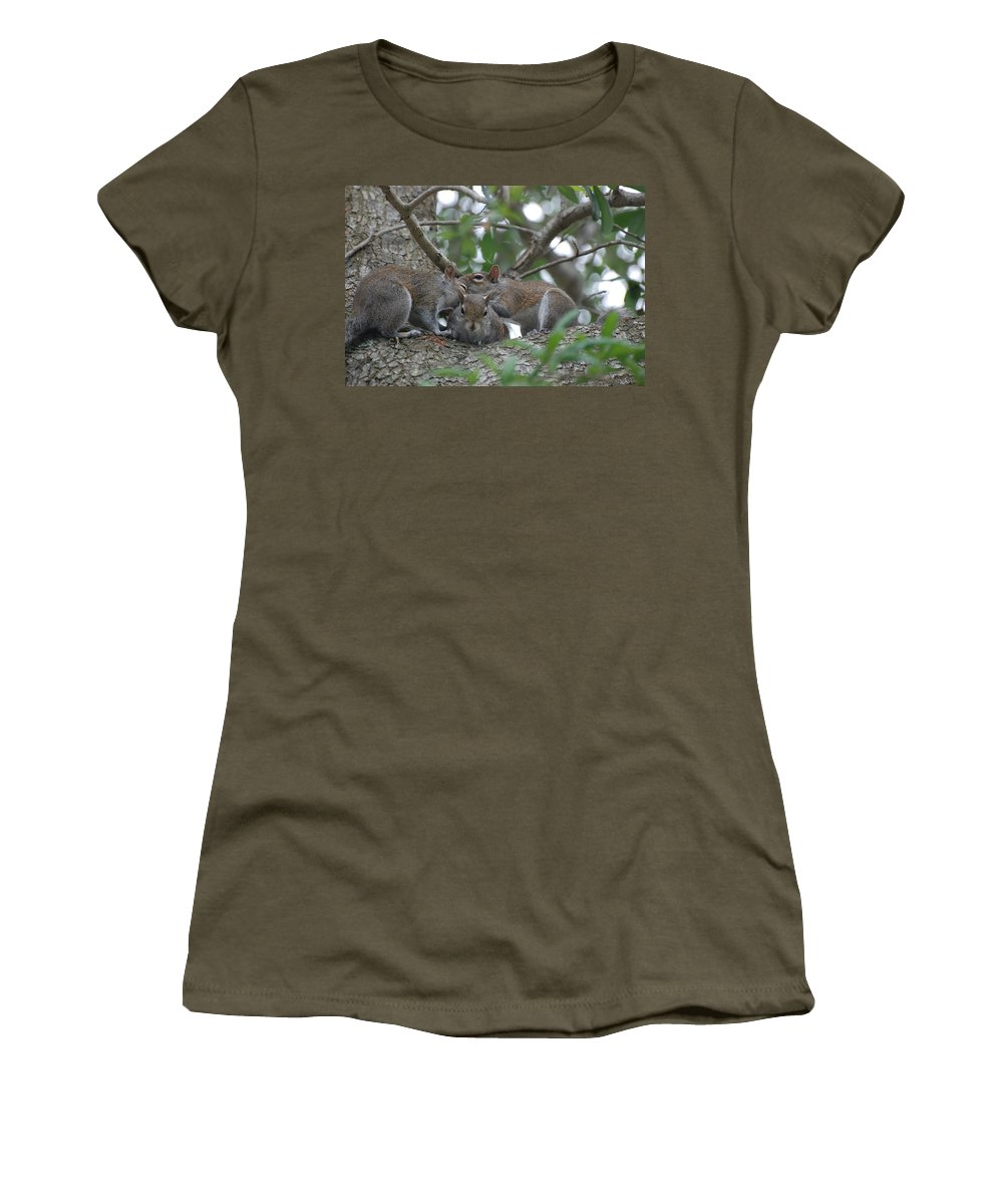 Squirrel Women's T-Shirt (Athletic Fit) featuring the photograph Why Me by Rob Hans