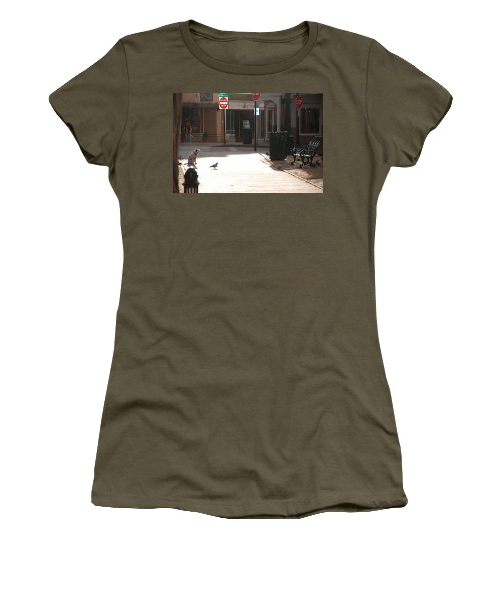 Dog Women's T-Shirt featuring the photograph Why Question Mark by Rob Hans