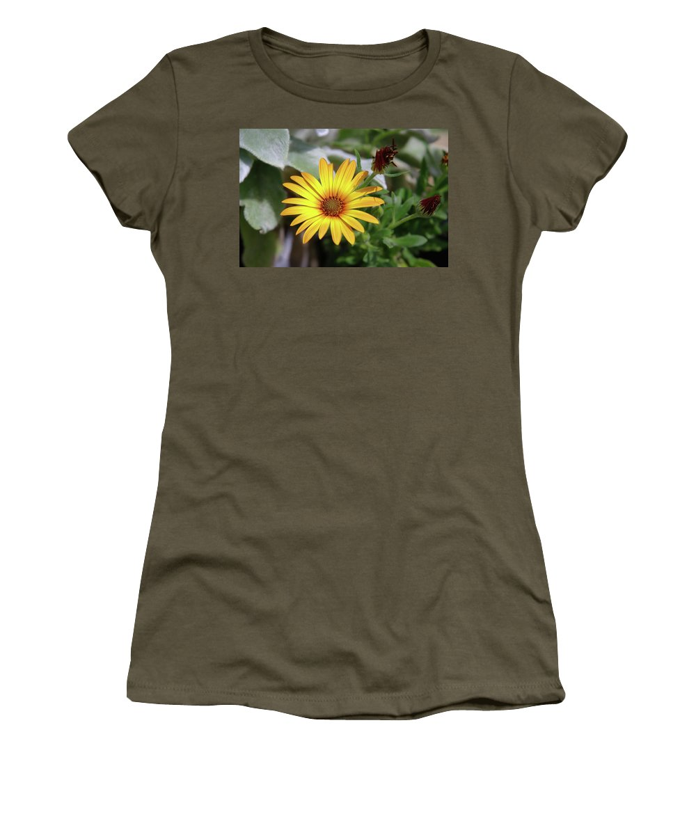 Flowers Women's T-Shirt (Athletic Fit) featuring the photograph Wide Open In Bloom by Jeff Swan
