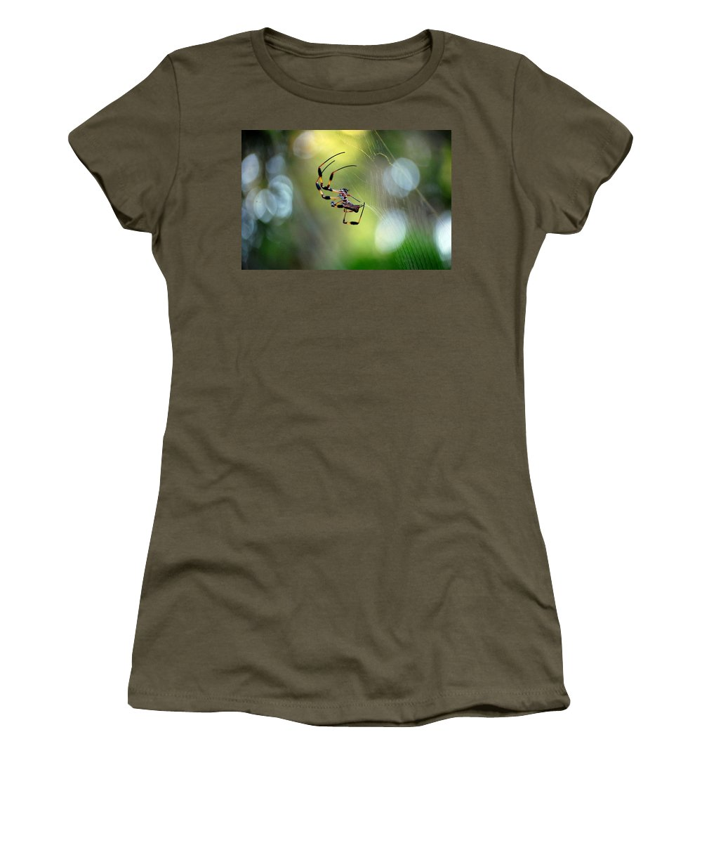 Working The Web Women's T-Shirt (Athletic Fit) featuring the photograph Working The Web by Robert Meanor
