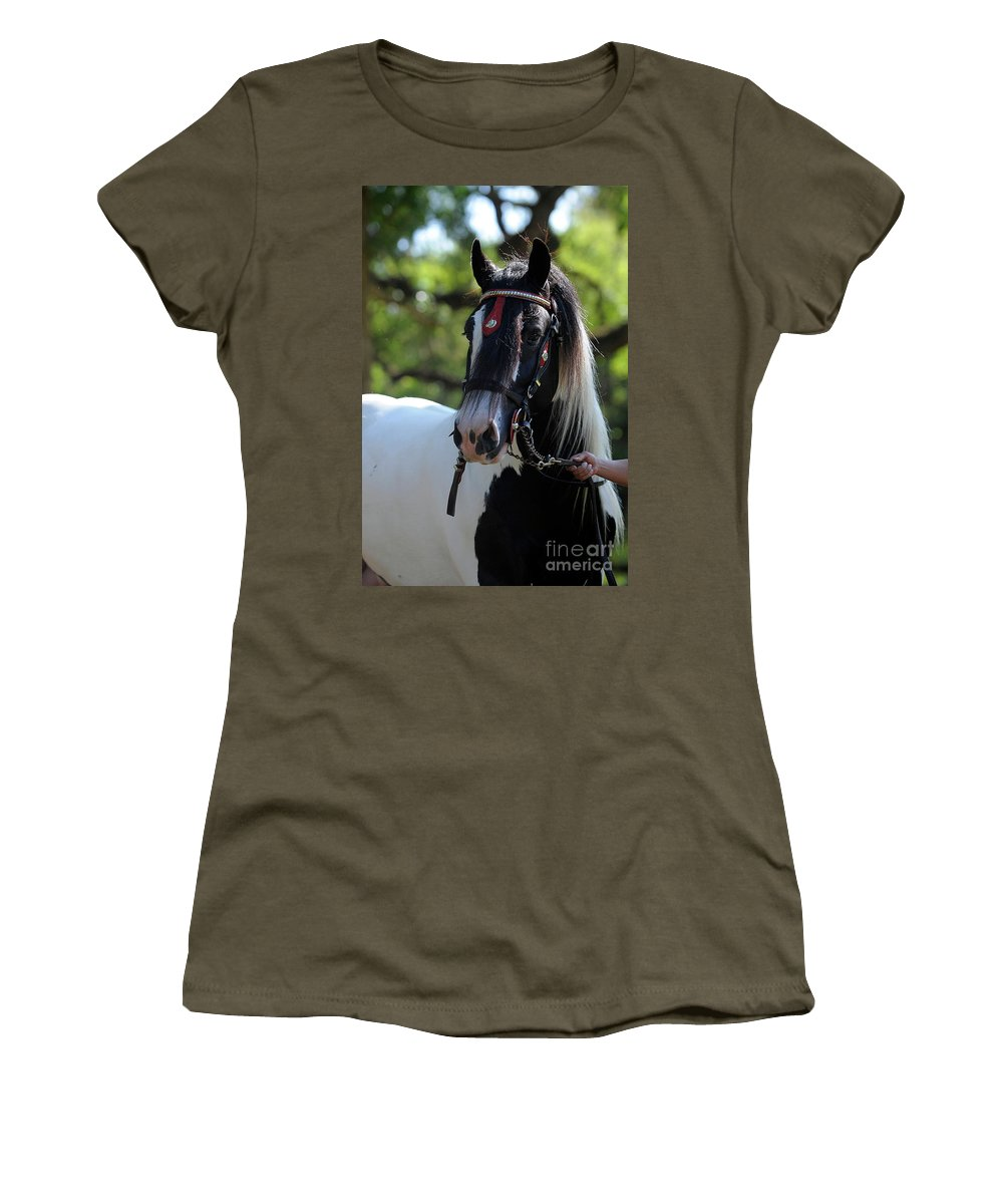 Gypsy Gold Women's T-Shirt featuring the photograph Wr The Big Son Of Bok by Carien Schippers