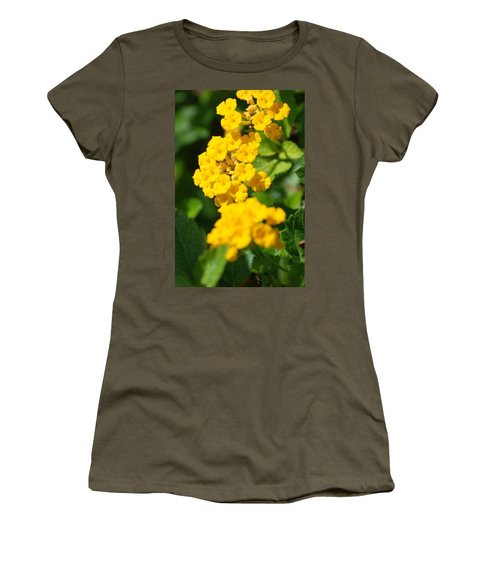 Flowers Women's T-Shirt featuring the photograph Yellow Blooms by Rob Hans