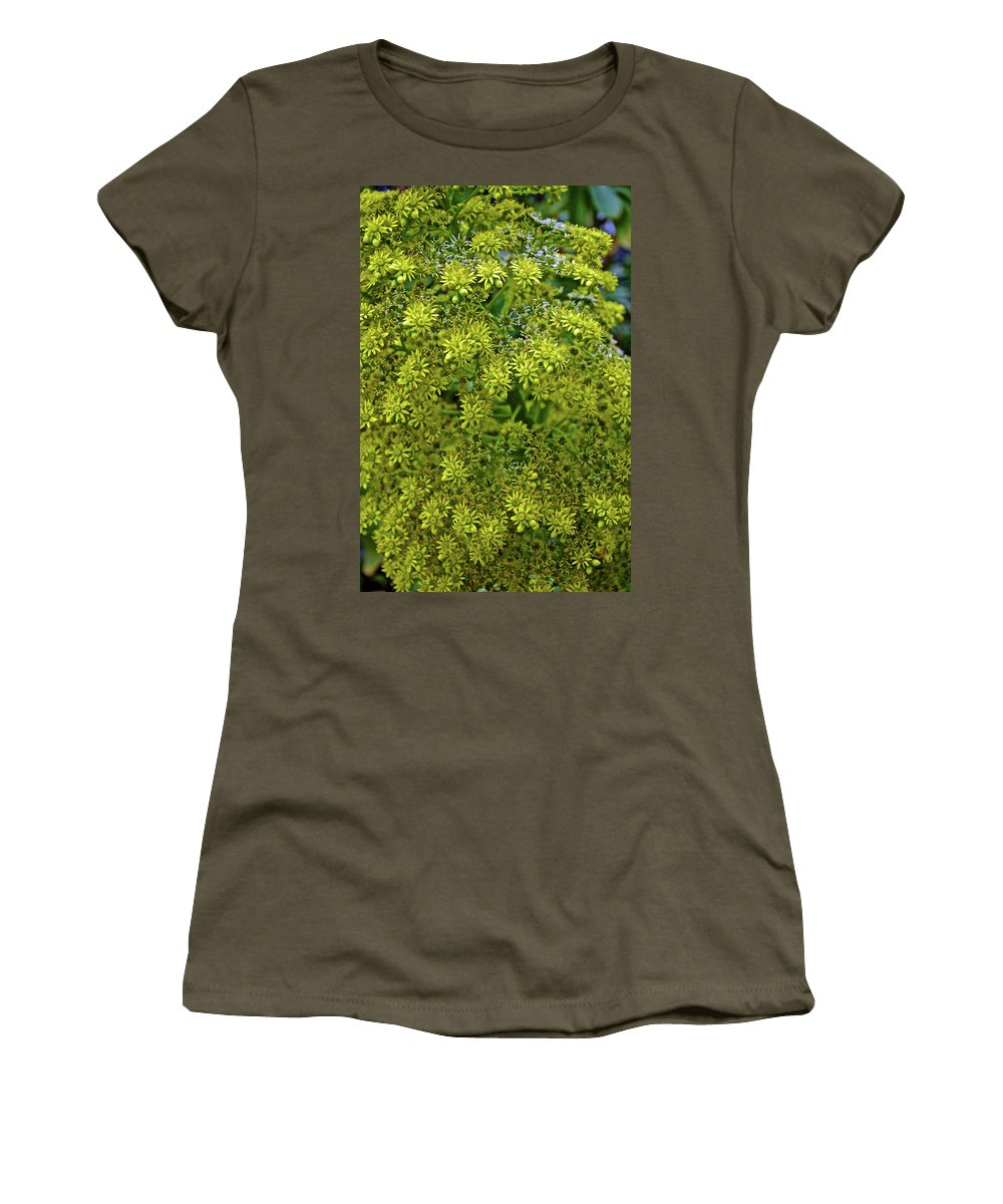 Yellow Blossoms Of Green Aeonium In Huntington Desert Garden In Huntington Gardens In San Marino Women's T-Shirt featuring the photograph Yellow Blossoms Of Green Aeonium In Huntington Desert Garden In San Marino-california by Ruth Hager