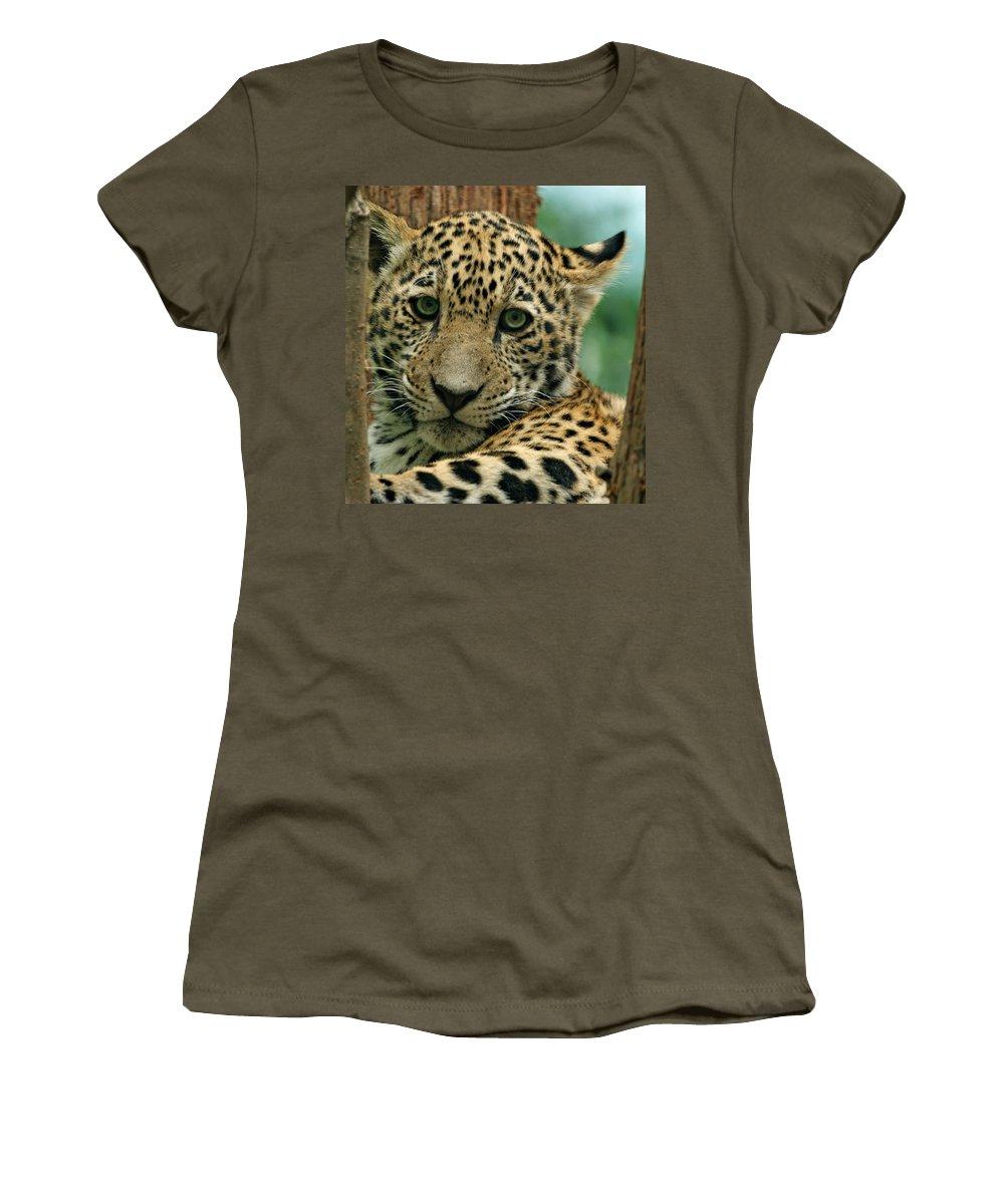 Jaguar Women's T-Shirt (Athletic Fit) featuring the photograph Young Jaguar by Sandy Keeton