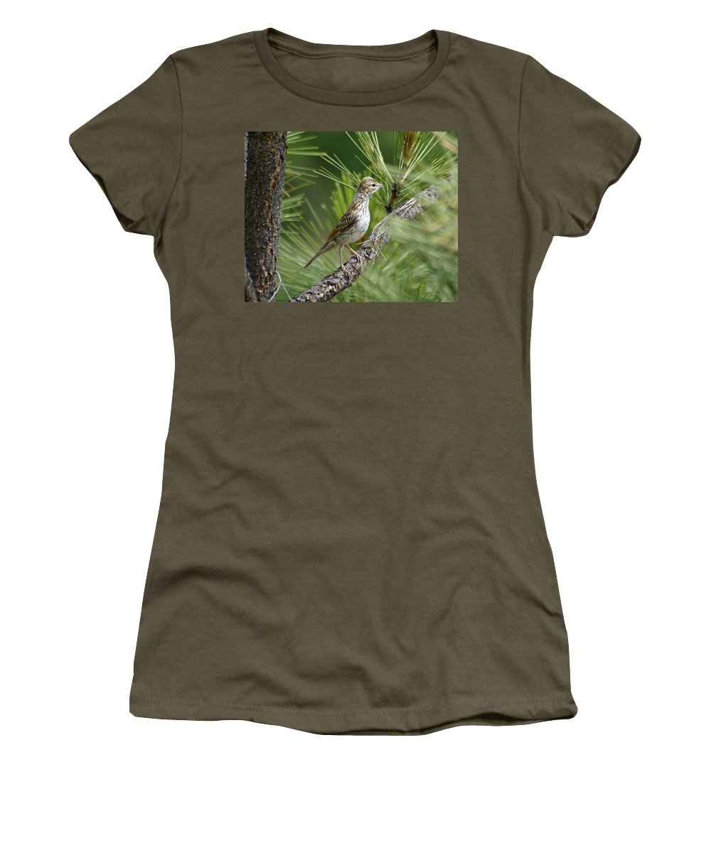 Birds Women's T-Shirt featuring the photograph Young Lark Sparrow 1 by Ben Upham III