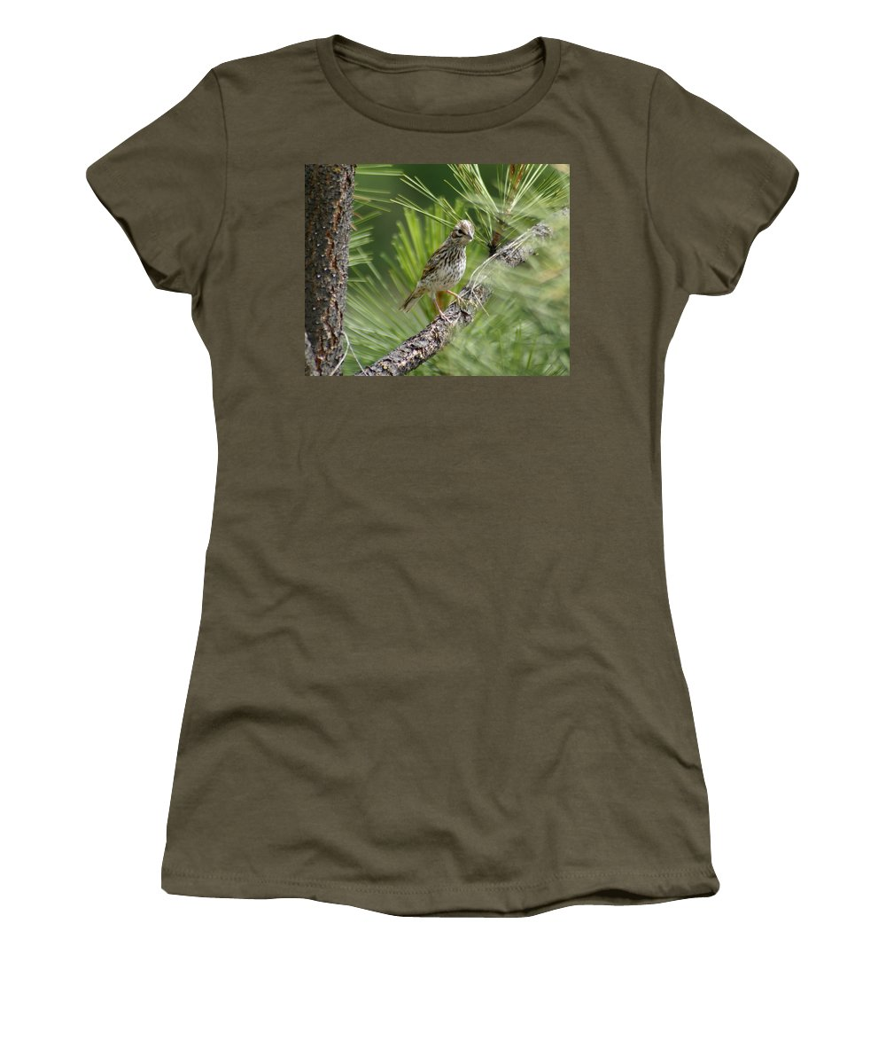 Birds Women's T-Shirt featuring the photograph Young Lark Sparrow 3 by Ben Upham III