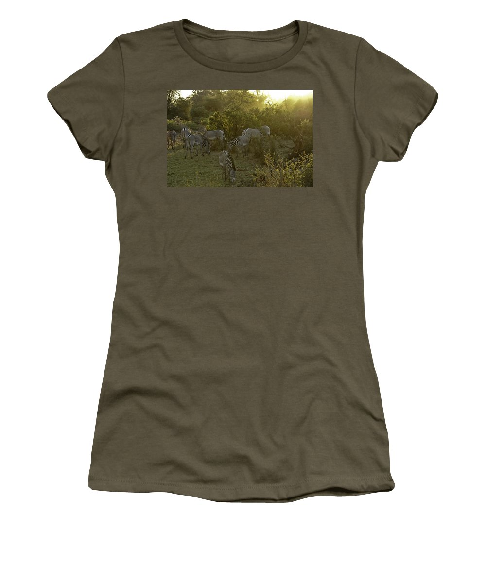 Africa Women's T-Shirt featuring the photograph Zebras In A Glen by Michele Burgess