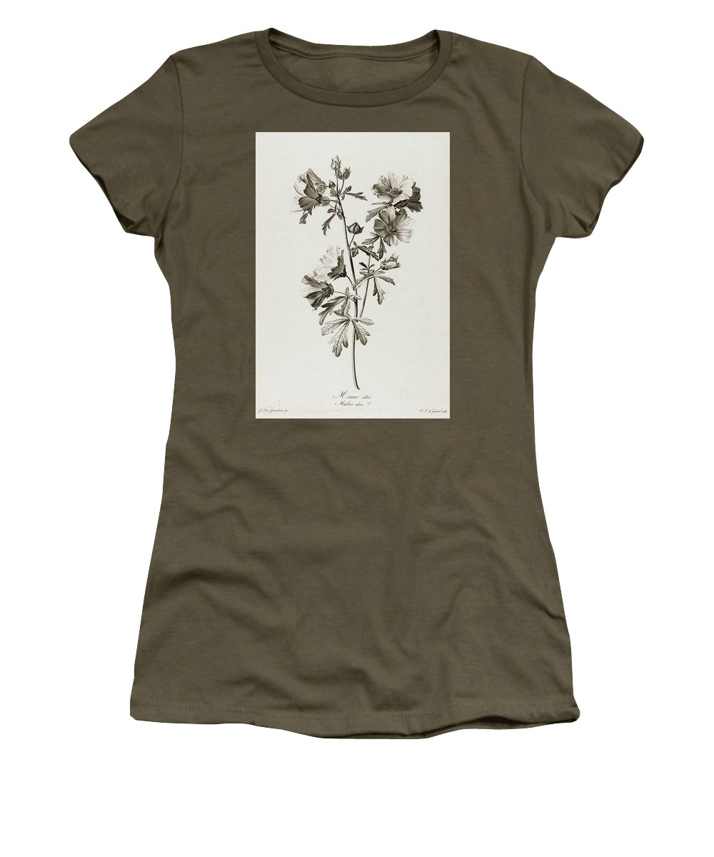 Mallow Family Women's T-Shirts