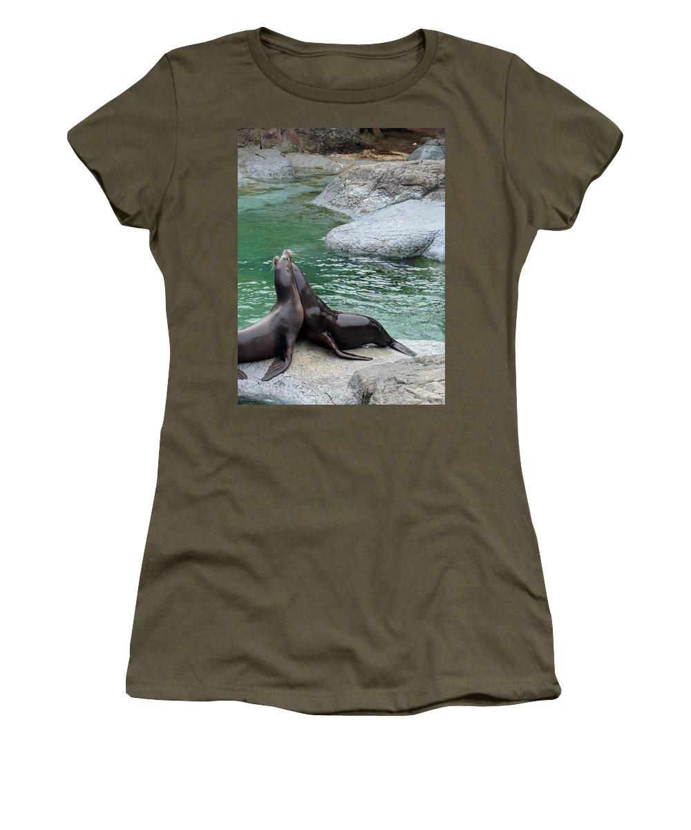Seal Women's T-Shirts