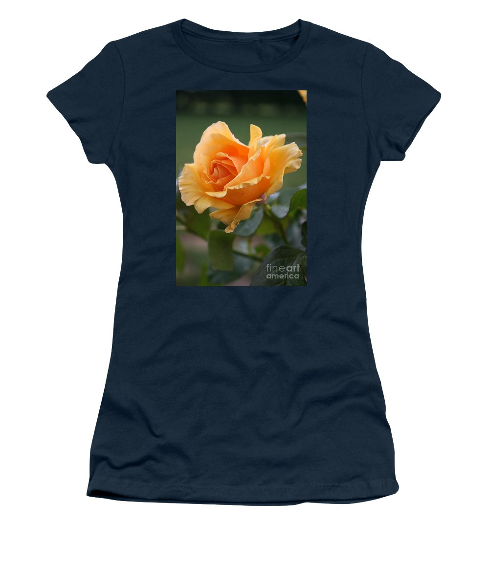 Rose Women's T-Shirt featuring the photograph In Full Bloom by Christiane Schulze Art And Photography