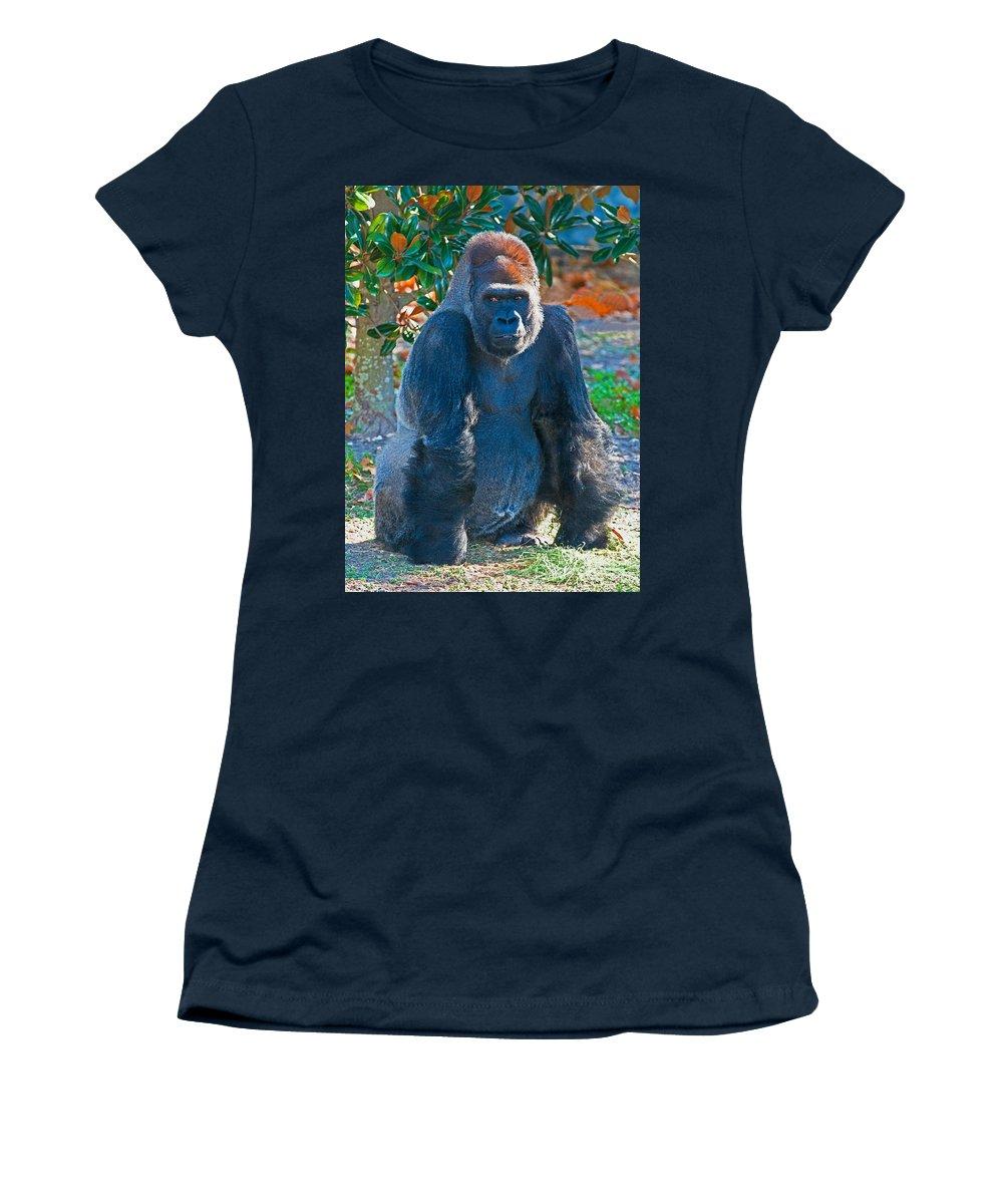 Western Lowland Gorilla Women's T-Shirt featuring the photograph Western Lowland Gorilla by Millard H. Sharp