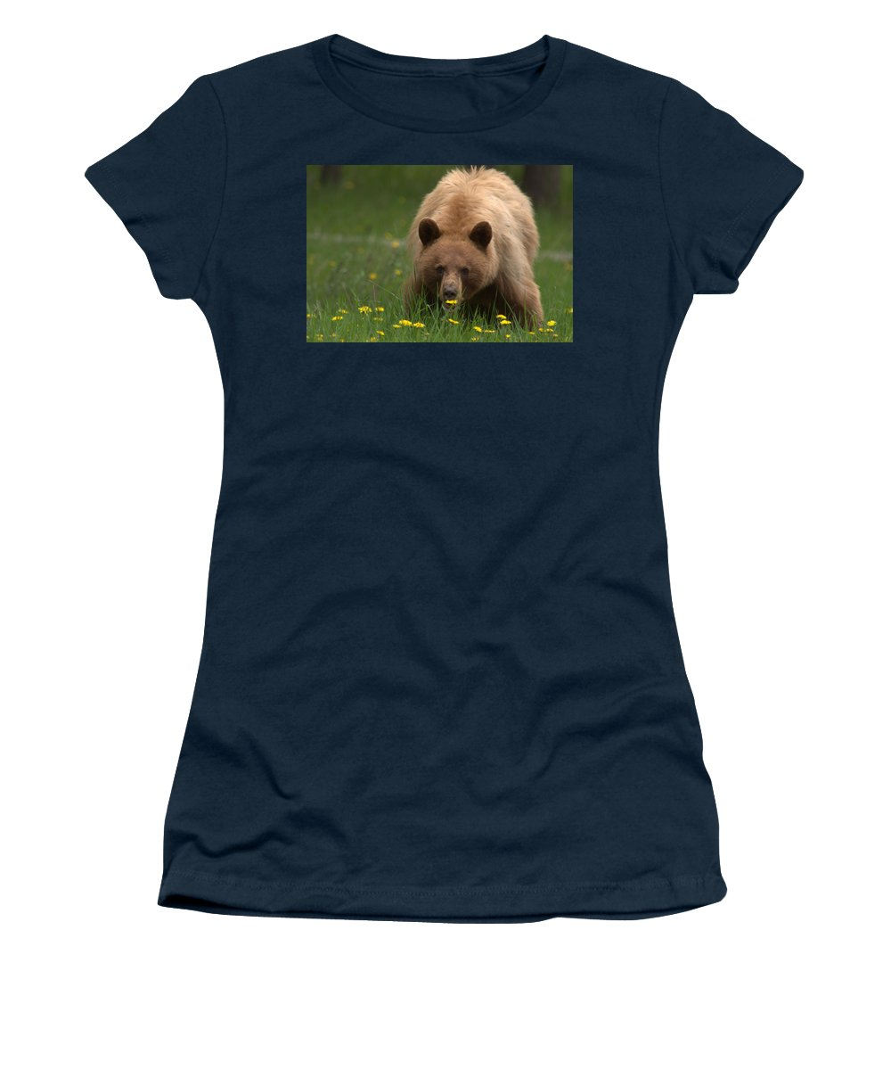 Bear Women's T-Shirt featuring the photograph Black Bear by Frank Madia