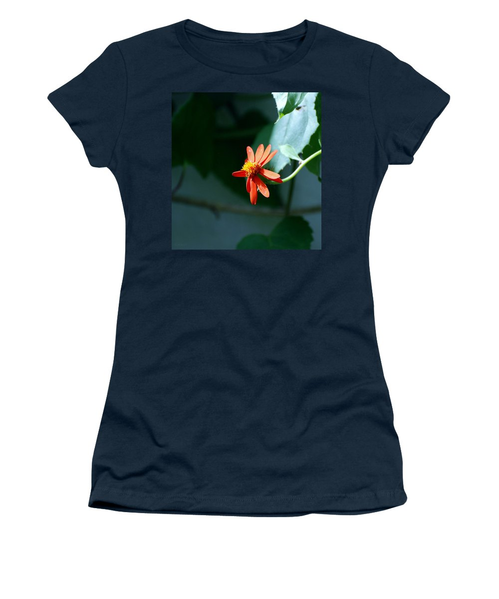 Lepidopterology Women's T-Shirt featuring the photograph Bloom by Rob Hans