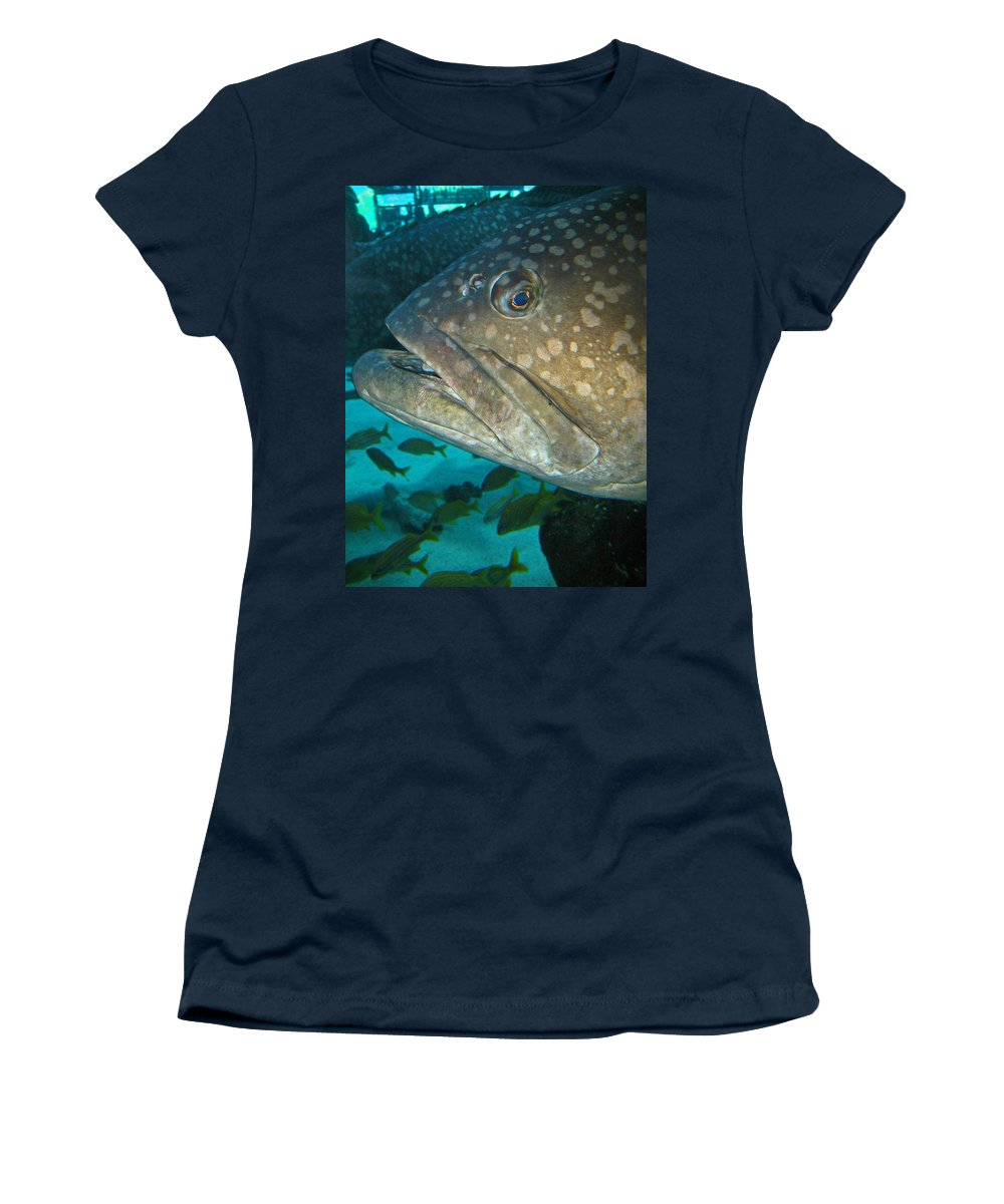 Grouper Women's T-Shirt featuring the photograph Blue-eyed Grouper Fish by Connie Fox