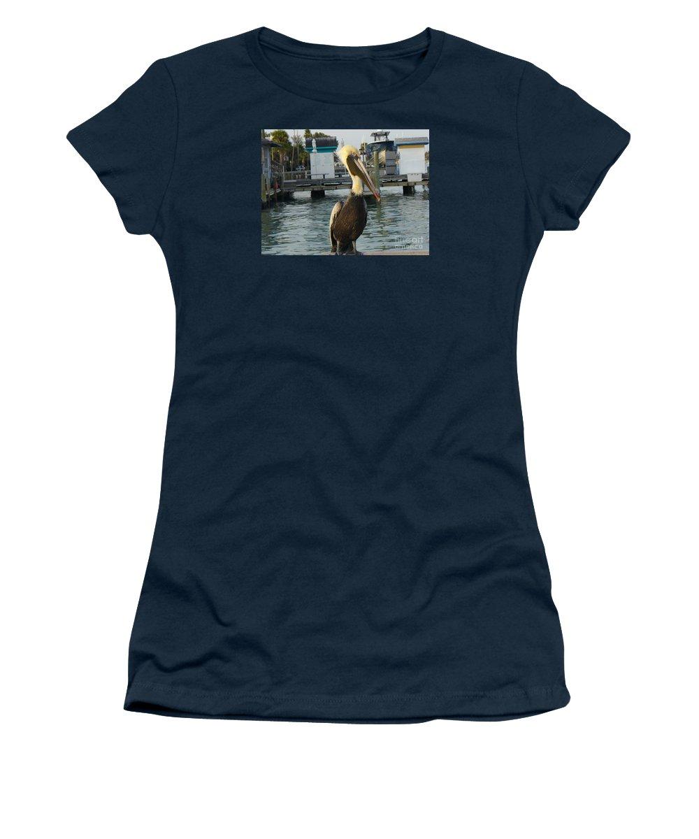Wildlife Women's T-Shirt featuring the photograph Brown Pelican by Lingfai Leung