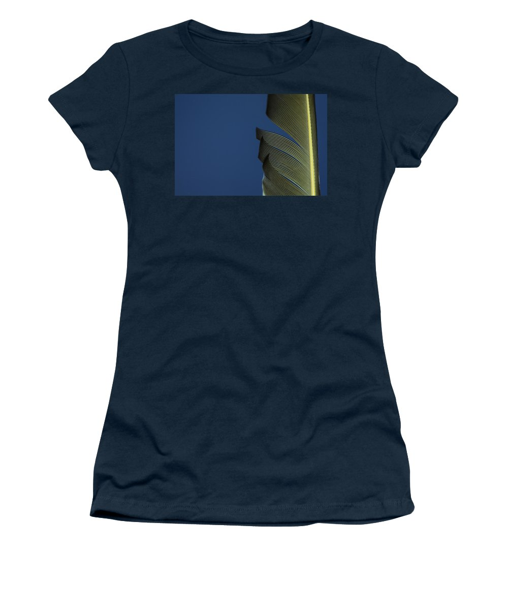 Feather Women's T-Shirt featuring the photograph Golden Finch Feather by Karol Livote