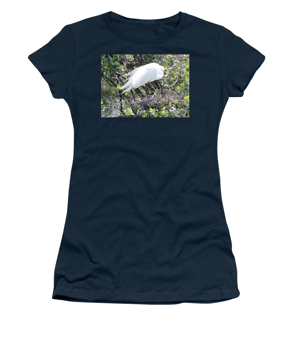 Great Egret Women's T-Shirt featuring the photograph Great Egret On Nest by Carol Groenen