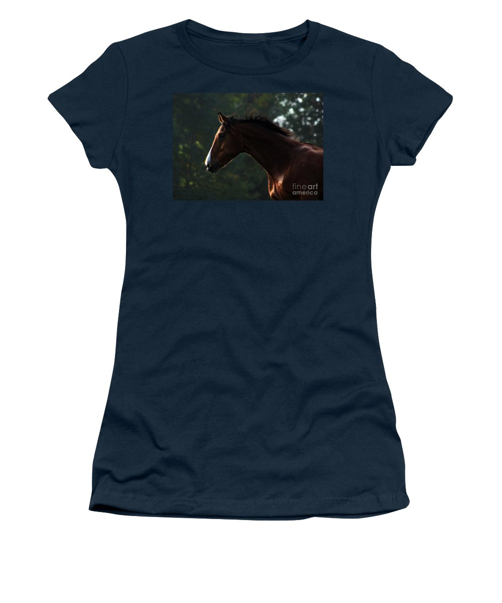 Horse Women's T-Shirt featuring the photograph Portrait Of A Horse by Angel Ciesniarska