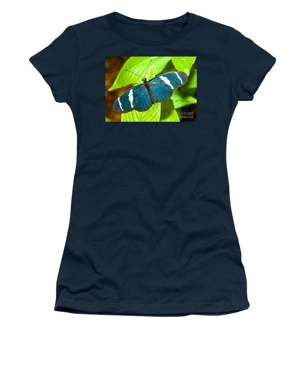 Tropical Butterfly Women's T-Shirt featuring the photograph Sara Butterfly by Millard H. Sharp