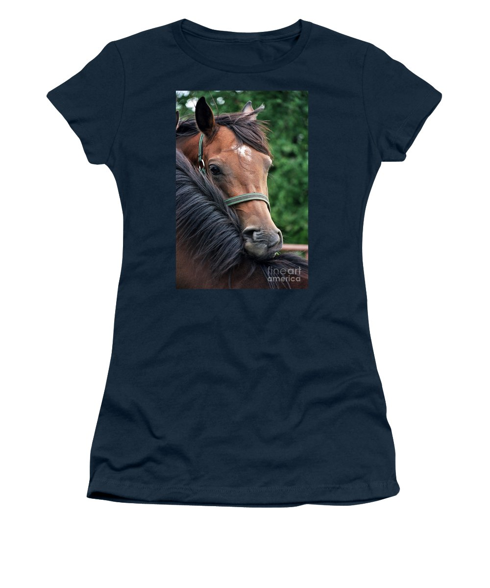 Horse Portrait Women's T-Shirt featuring the photograph Scratch My Back by Angel Ciesniarska