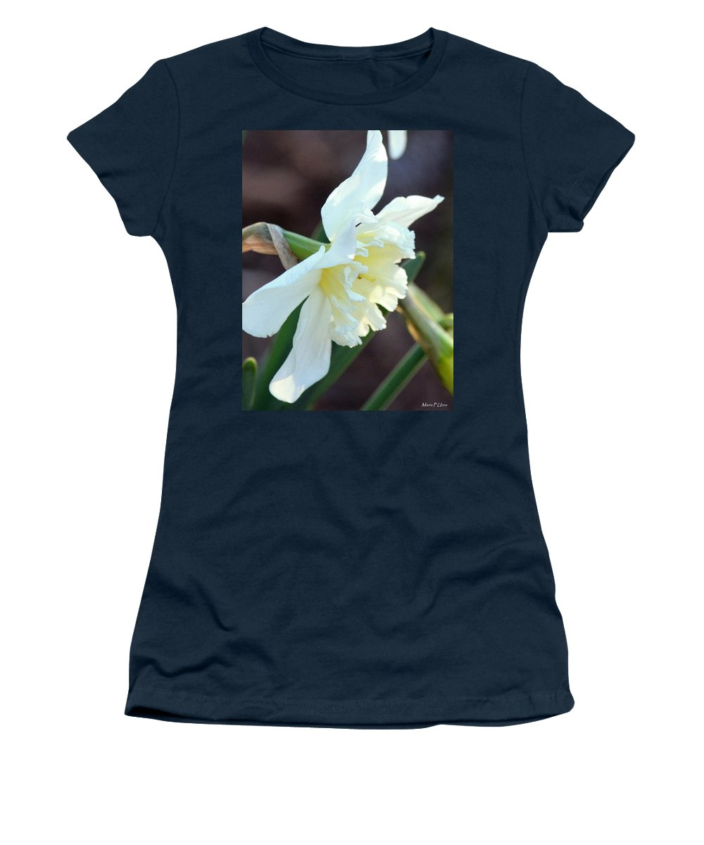 Sunlit White Daffodil Women's T-Shirt featuring the photograph Sunlit White Daffodil by Maria Urso