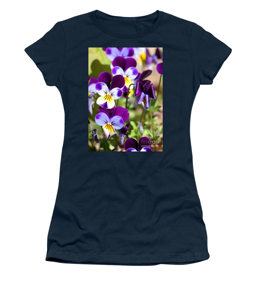 Viola Women's T-Shirt featuring the photograph Sweet Viola by Carol Groenen