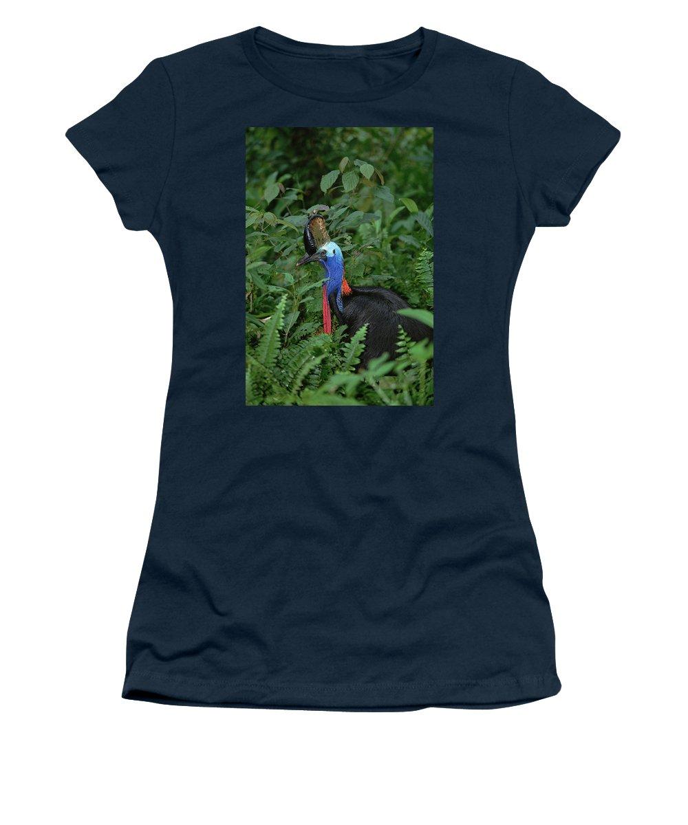 Mp Women's T-Shirt featuring the photograph Southern Cassowary Casuarius Casuarius by Konrad Wothe