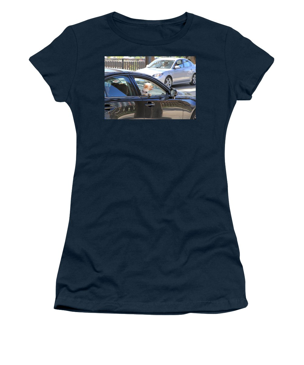 Dog Women's T-Shirt featuring the photograph Happy Dog by Valentino Visentini