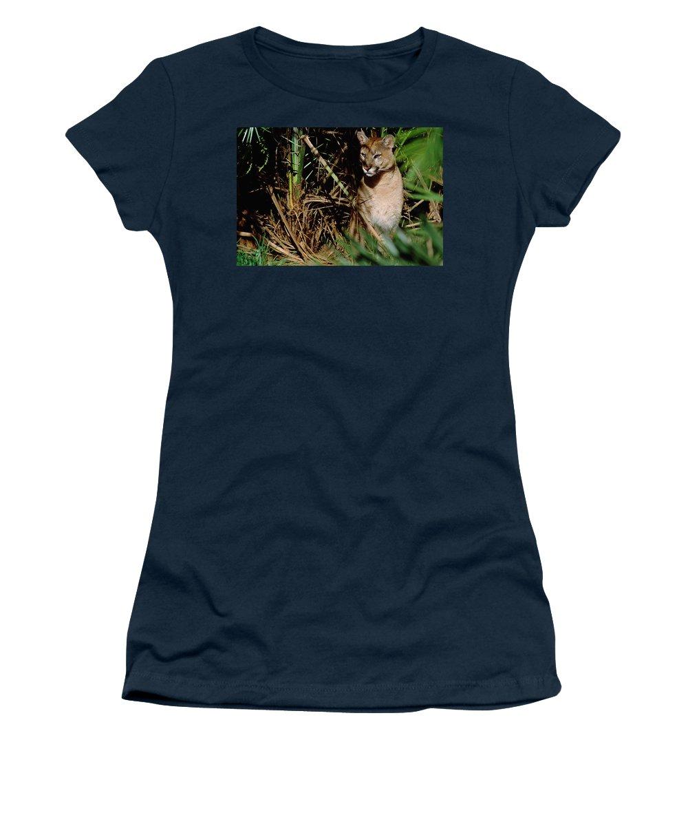 Mp Women's T-Shirt featuring the photograph Mountain Lion Puma Concolor Portrait by Claus Meyer
