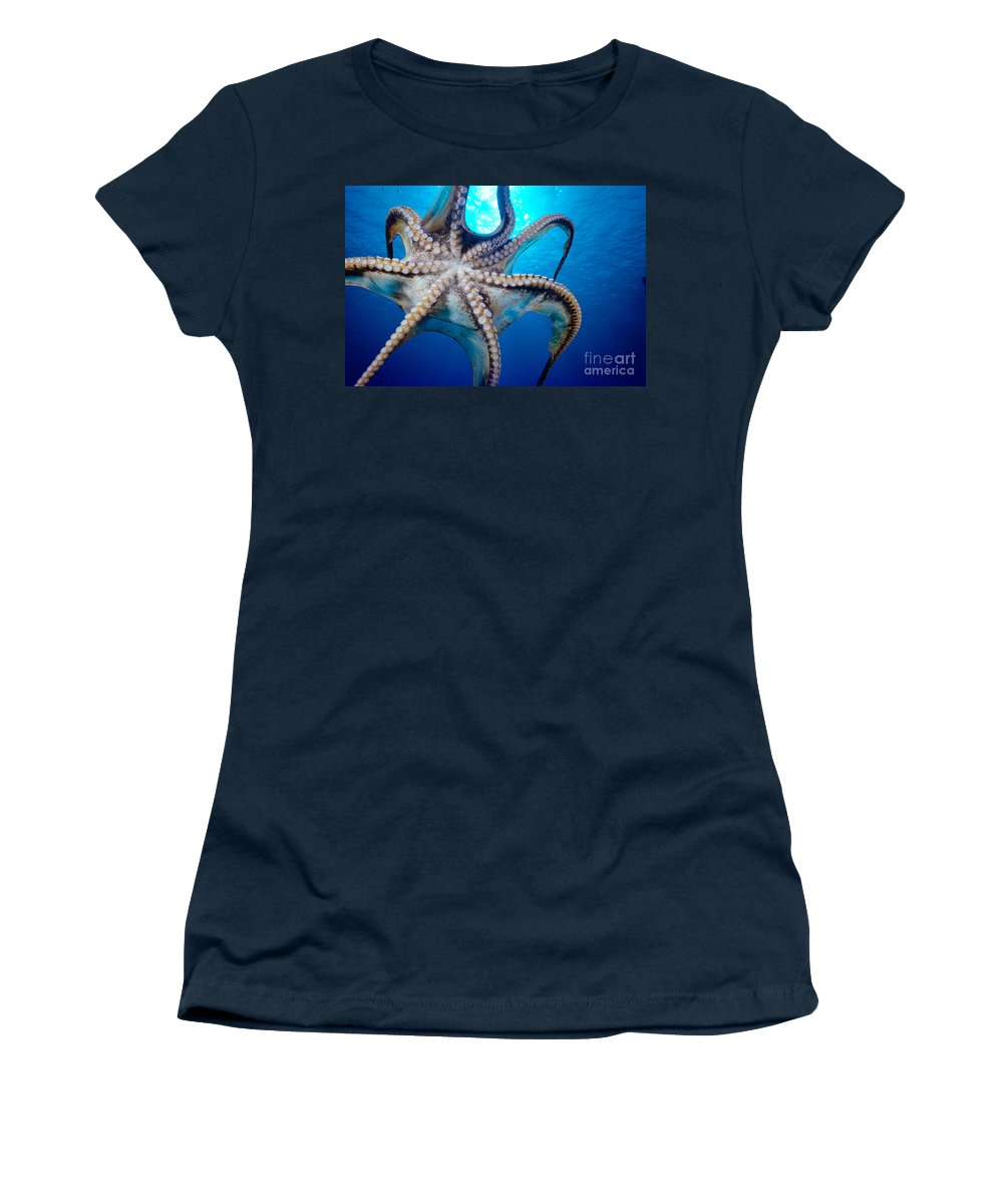 Animal Art Women's T-Shirt featuring the photograph Hawaii, Day Octopus by Dave Fleetham - Printscapes