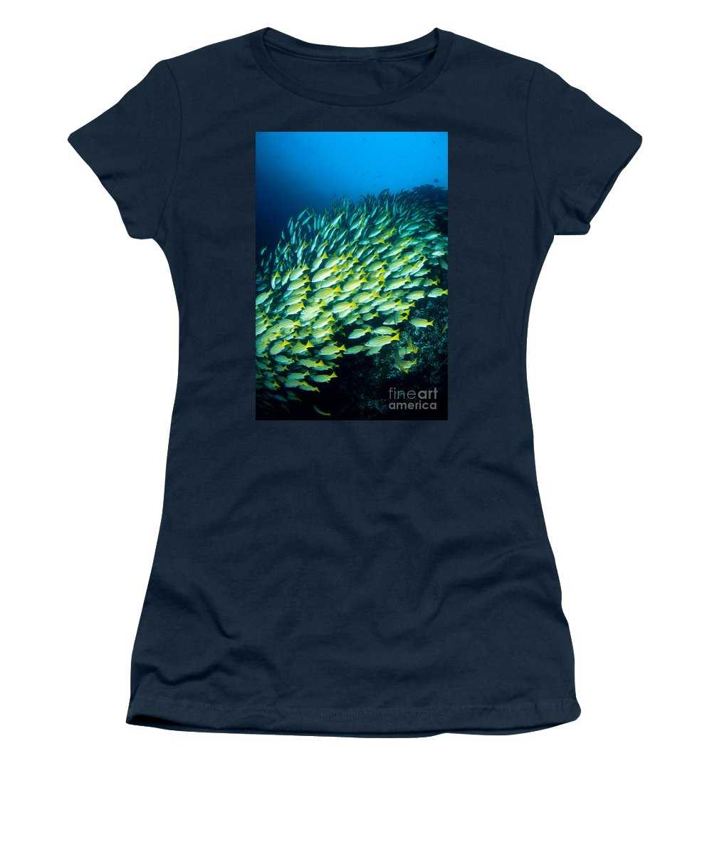 Animal Art Women's T-Shirt featuring the photograph Coral Reef Scene by Dave Fleetham - Printscapes