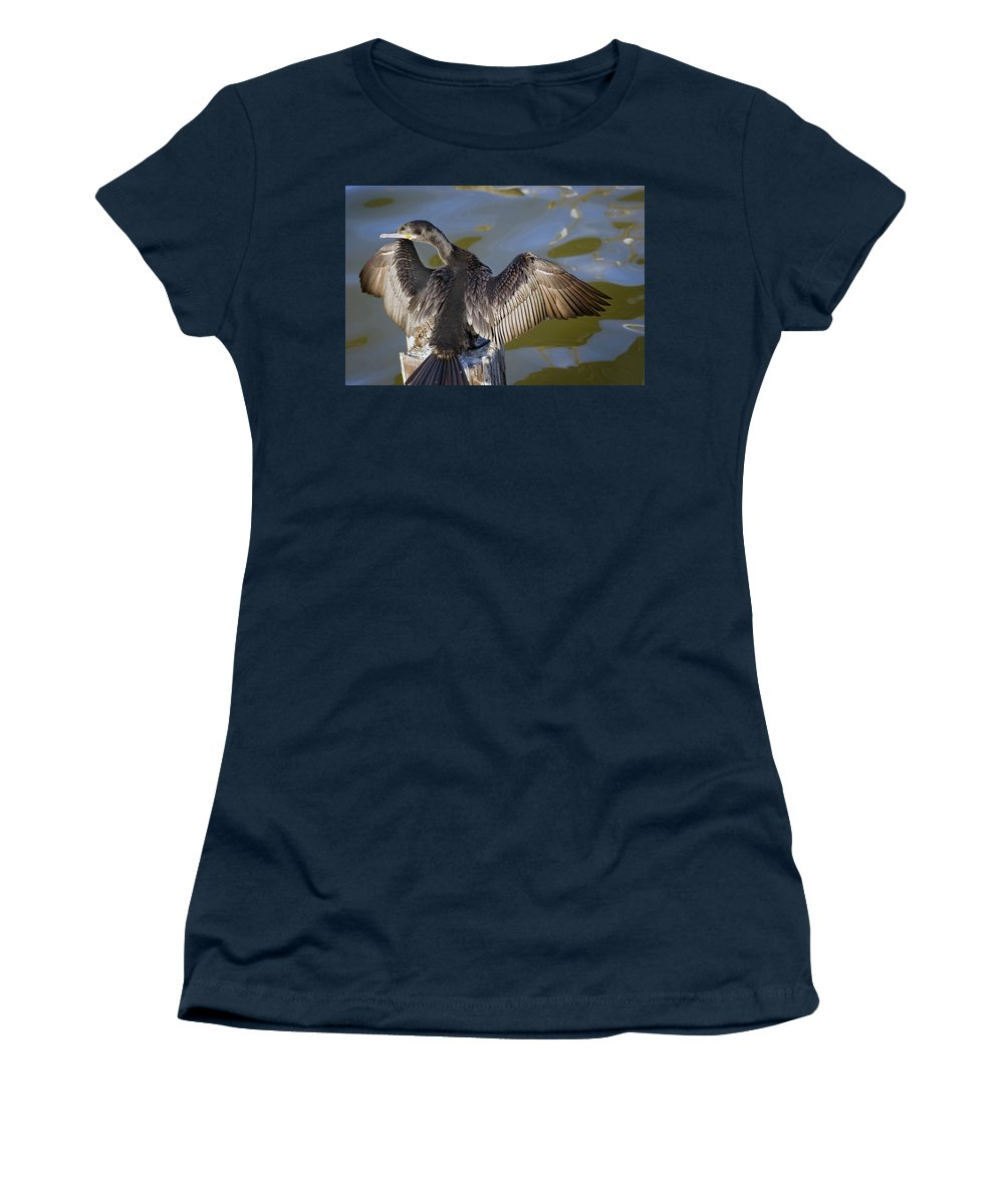 Neotropic Cormorant Women's T-Shirt featuring the photograph Cormorant looking back by Robert Brown