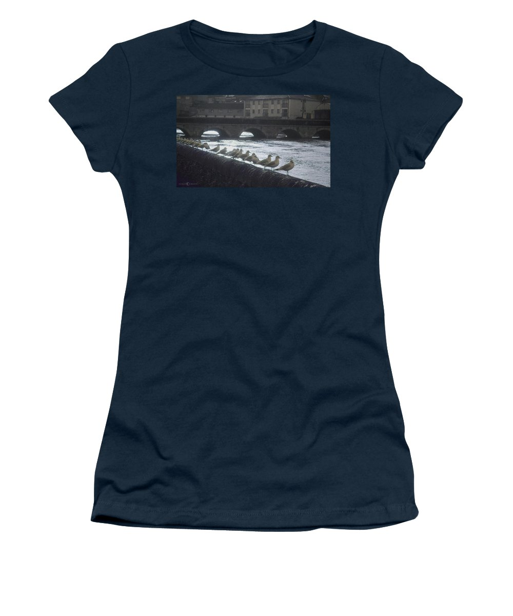 Birds Women's T-Shirt (Athletic Fit) featuring the photograph Line Of Birds by Tim Nyberg