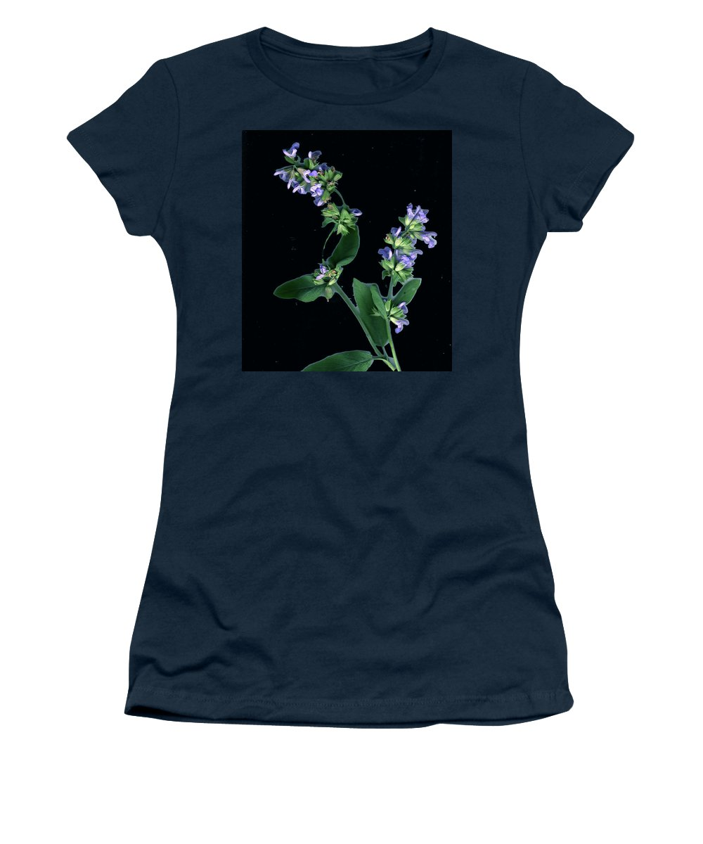 Women's T-Shirt (Athletic Fit) featuring the photograph Sage Blossom by Wayne Potrafka