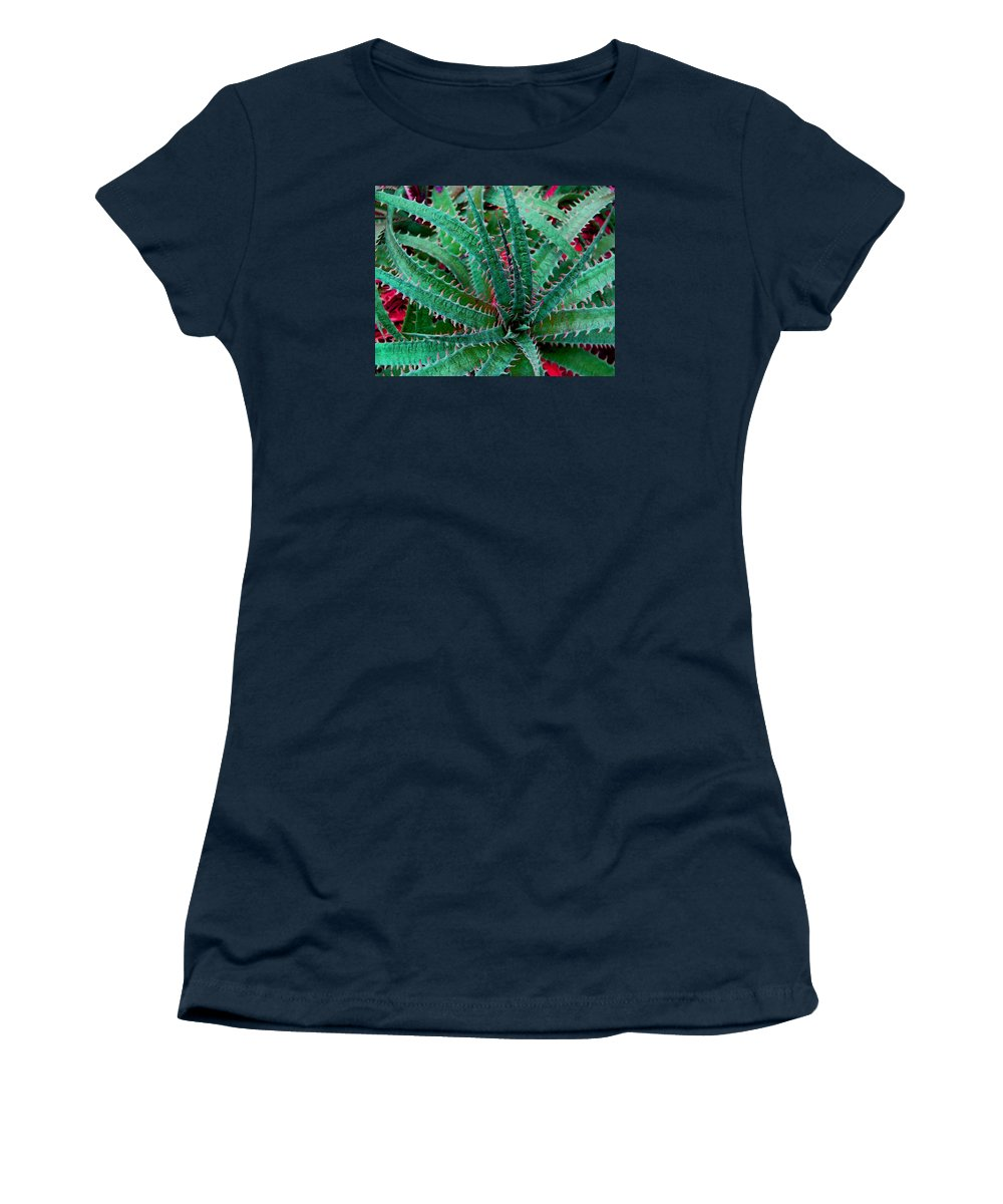 Cactus Women's T-Shirt (Athletic Fit) featuring the photograph Spiral Cactus by John Malmquist