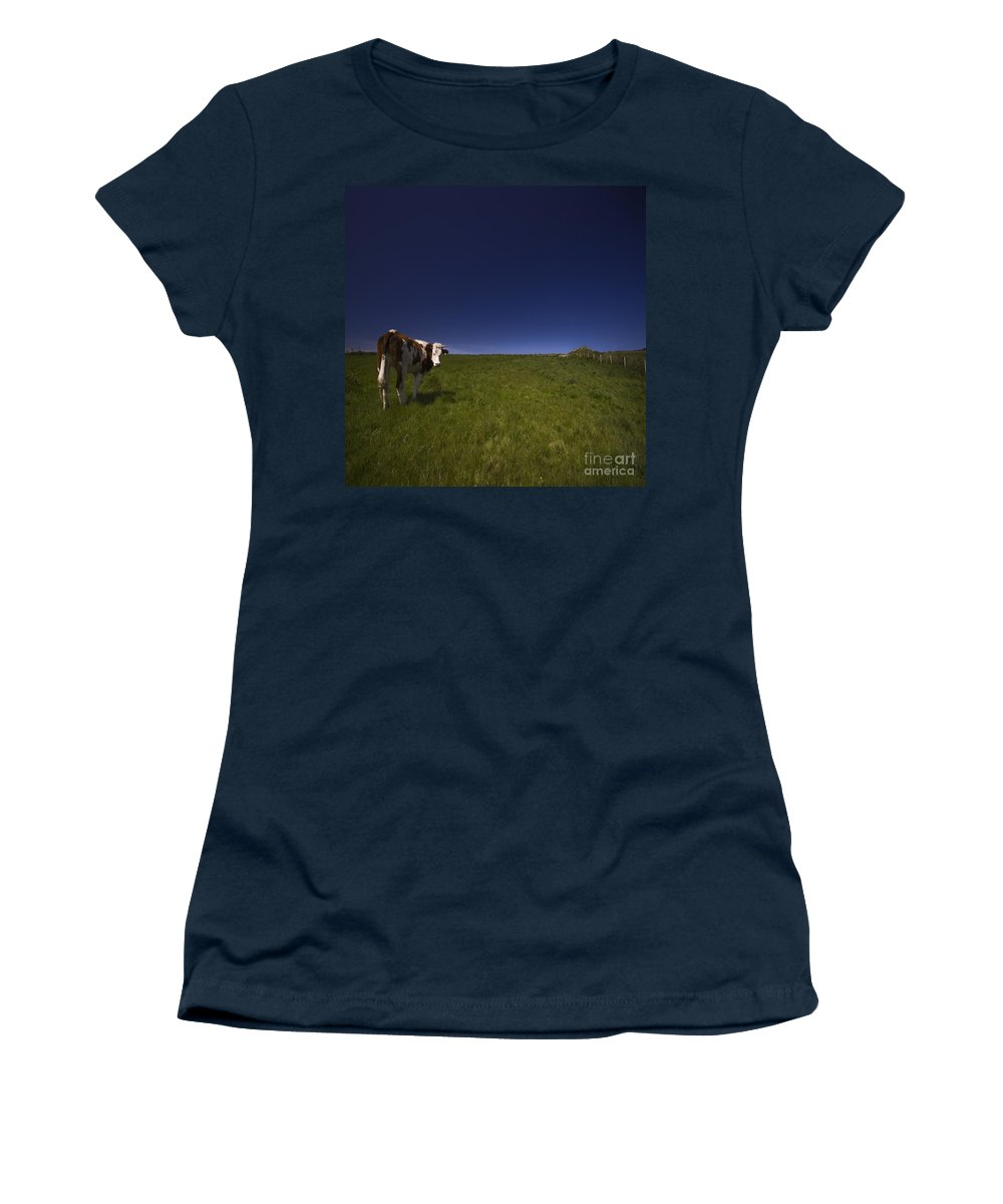 Cow Women's T-Shirt (Athletic Fit) featuring the photograph The Moody Cow by Angel Ciesniarska