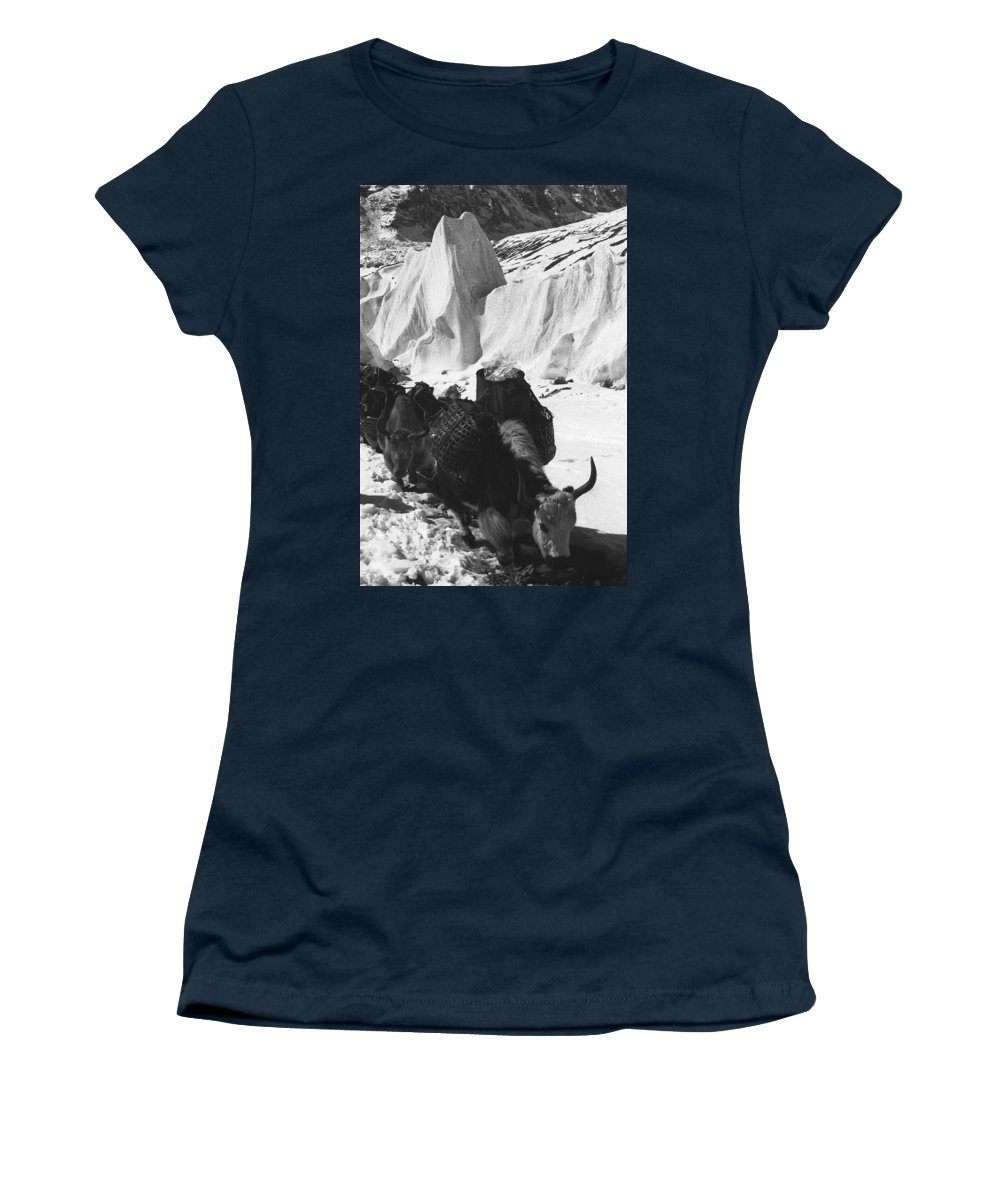 Yak Women's T-Shirt (Athletic Fit) featuring the photograph Yak And Serac by Omar Shafey