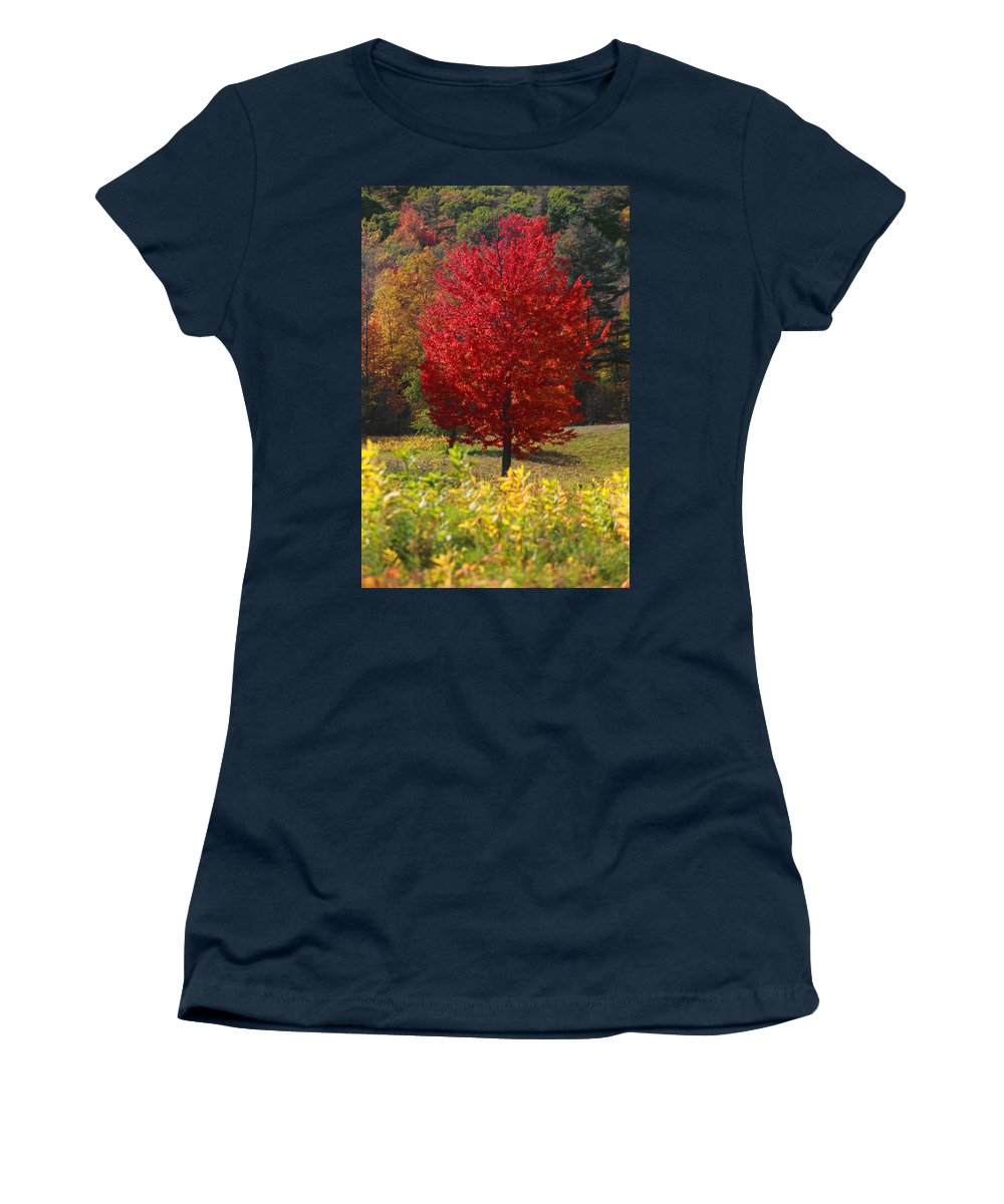 Red Maple Tree Women's T-Shirt featuring the photograph Red Maple Tree by Trevor Slauenwhite