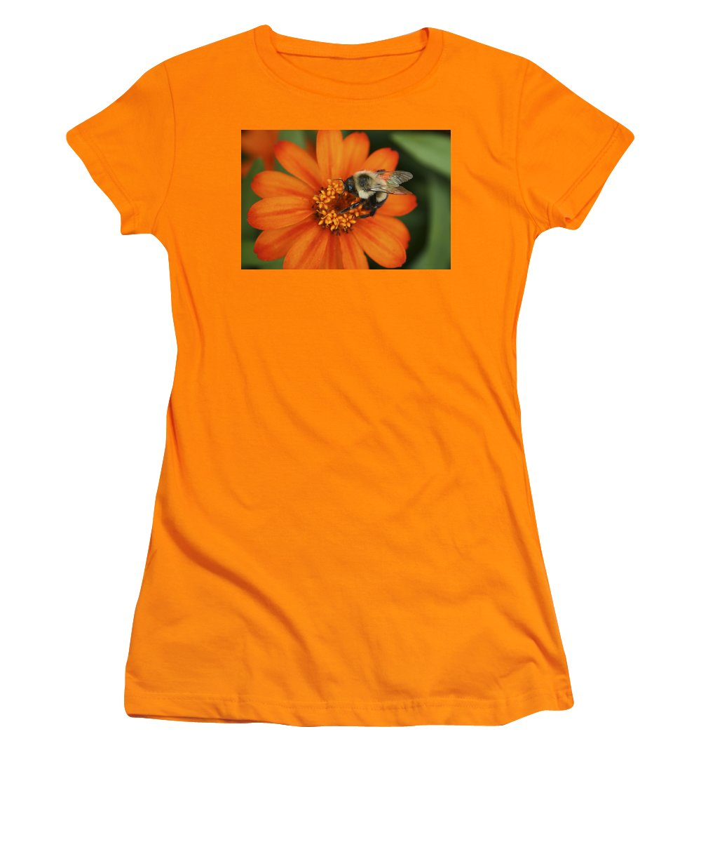 Bee Women's T-Shirt (Athletic Fit) featuring the photograph Bee On Aster by Margie Wildblood