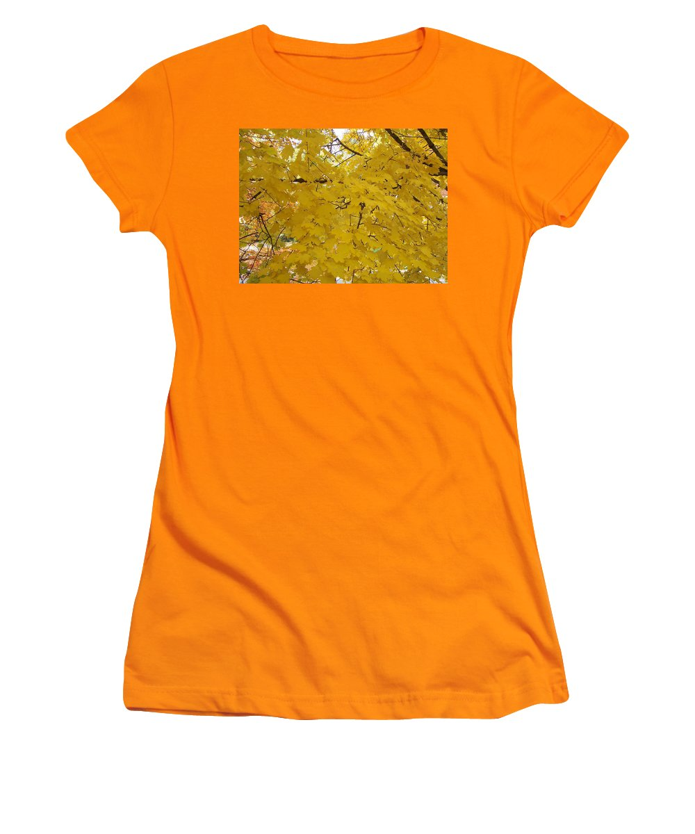 Fall Autum Trees Maple Yellow Women's T-Shirt (Athletic Fit) featuring the photograph Golden Canopy by Karin Dawn Kelshall- Best