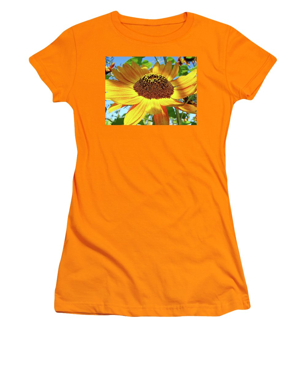 Sunflower Women's T-Shirt (Athletic Fit) featuring the photograph Sunflower Art Prints Sun Flowers Gilcee Prints Baslee Troutman by Baslee Troutman