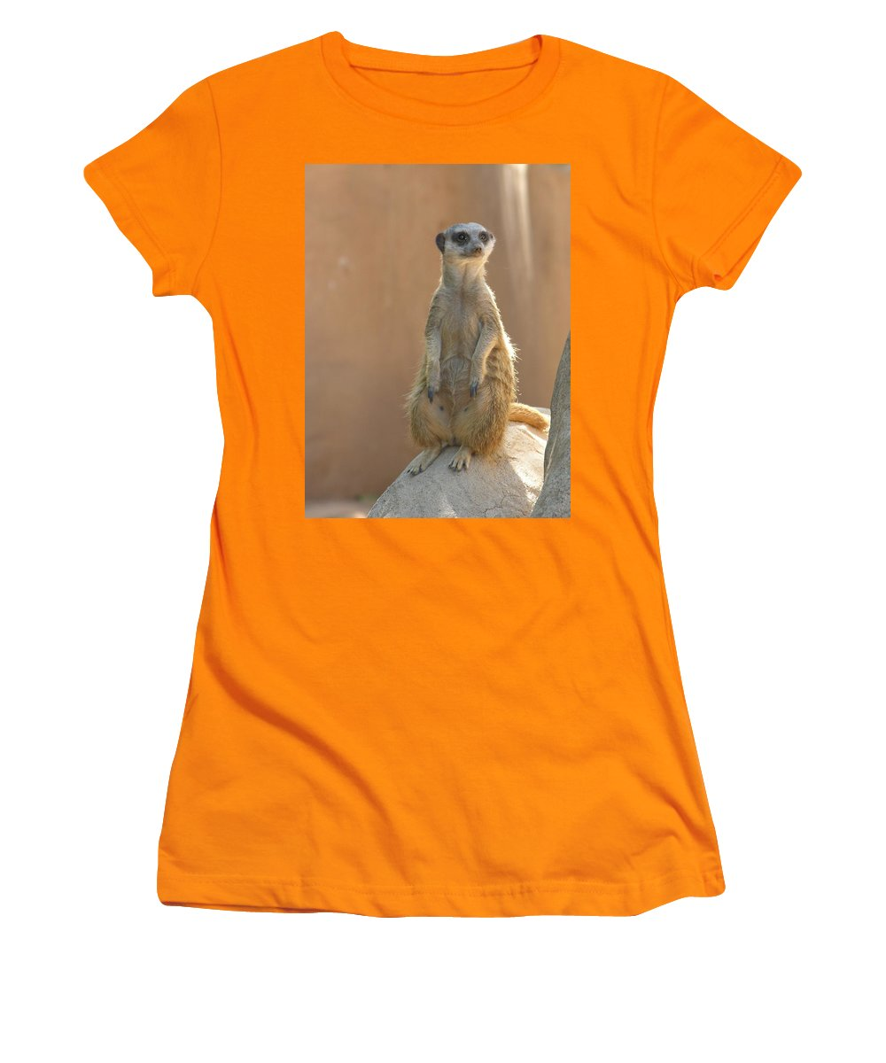 Animails Women's T-Shirt (Athletic Fit) featuring the photograph Untitled by Diane Greco-Lesser