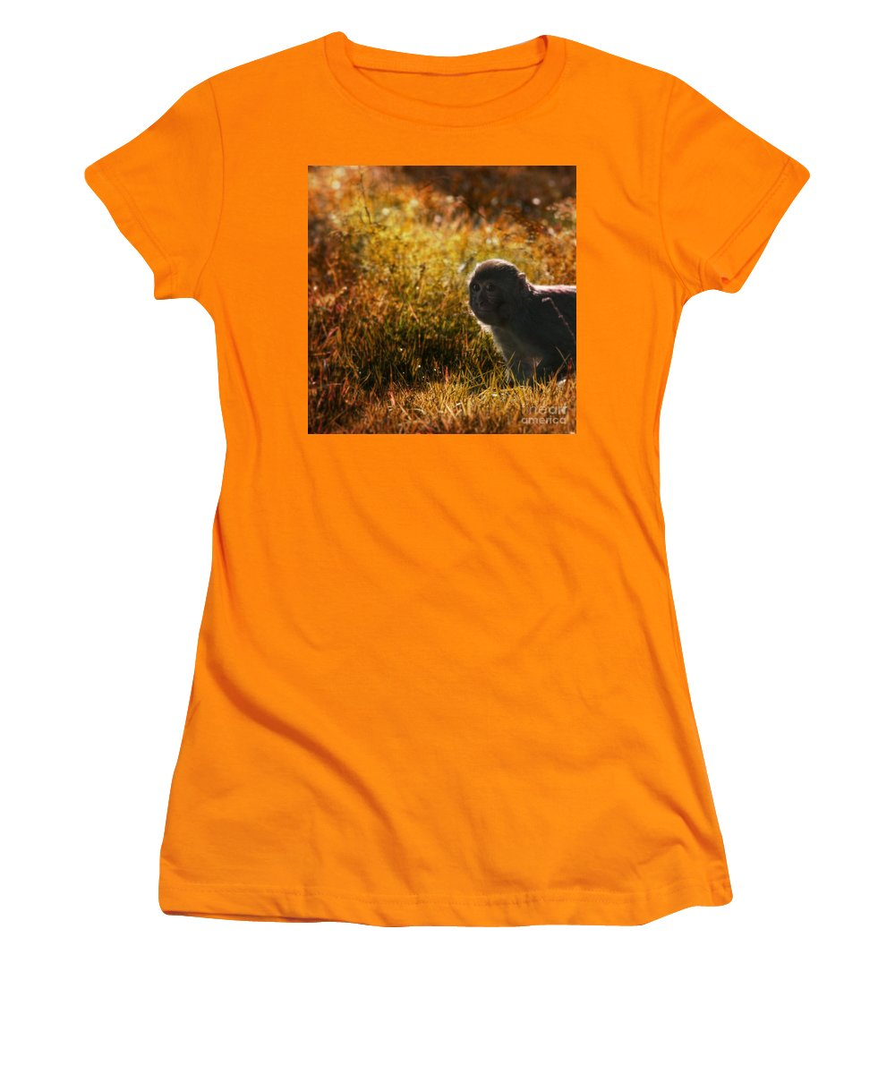 Monkey Women's T-Shirt (Athletic Fit) featuring the photograph Where Are You My Precious by Angel Tarantella