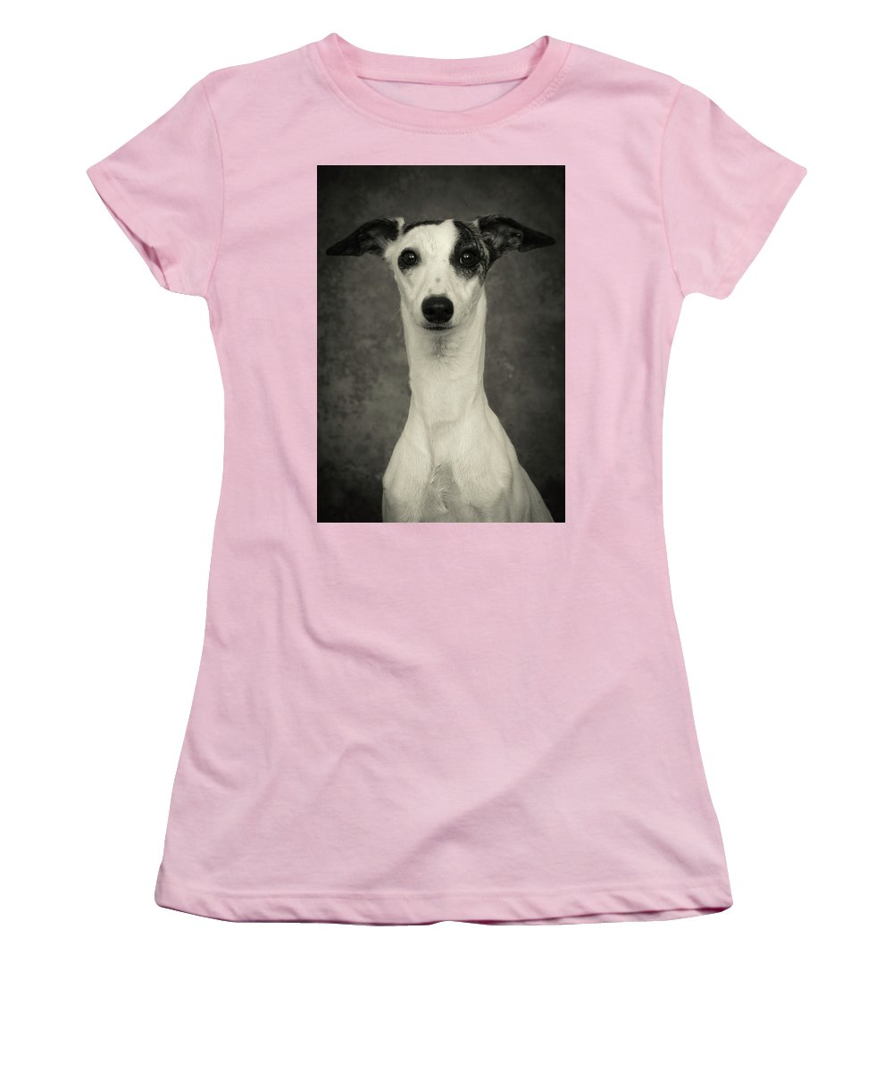 Whippet Women's T-Shirt (Athletic Fit) featuring the photograph Young Whippet In Black And White by Greg and Chrystal Mimbs