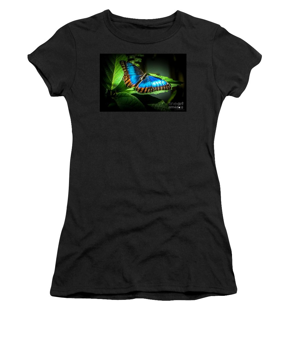 Common Blue Morpho Women's T-Shirt (Athletic Fit) featuring the photograph Common Blue Morpho Moth by Grace Grogan