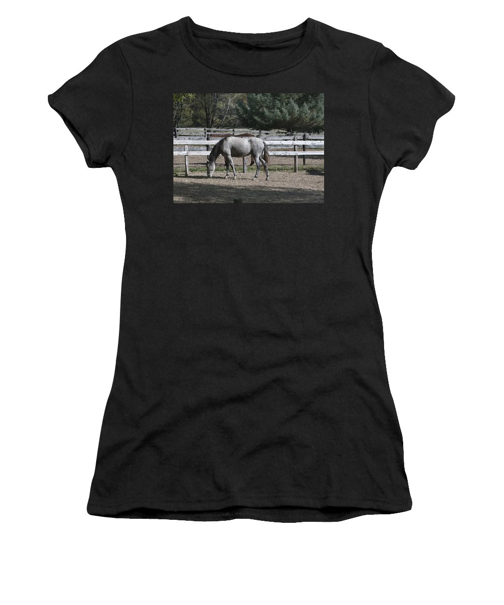 Animals Women's T-Shirt featuring the photograph Dapple Grey by Ray Summers Photography