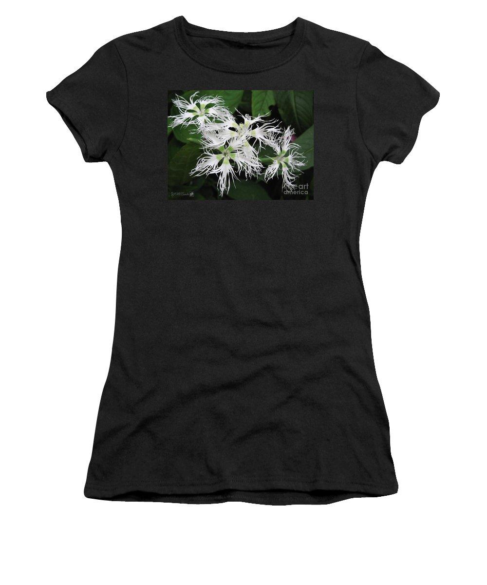 Dianthus Women's T-Shirt featuring the painting Dianthus Superbus - White by J McCombie
