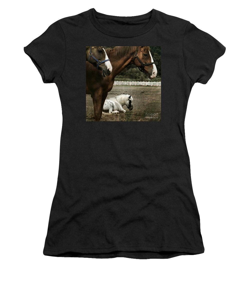 Appaloosa Women's T-Shirt (Athletic Fit) featuring the photograph Having A Rest by Angel Ciesniarska
